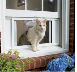 Petsafe-cat-windoor