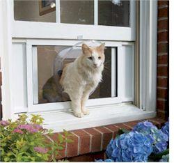 Petsafe-cat-windoor