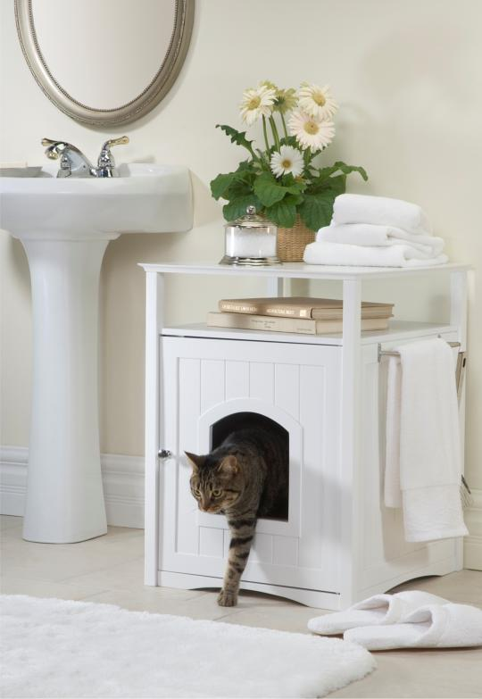 cat-washroom