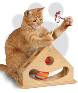 SKU-3836_tick_tock_teaser_cat_toy