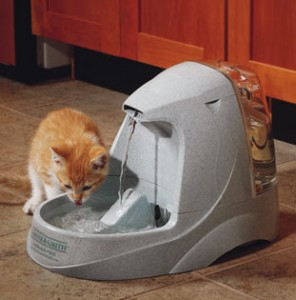drinkwell cat fountain