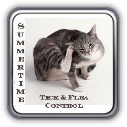 Front Page Templete Tick & Flea