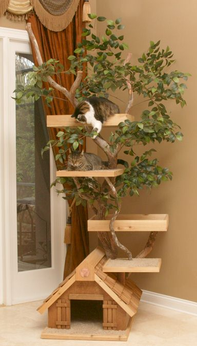 Cat discussion for cat lovers at 4 all cats for Pictures of cat trees